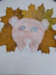 Kl. 1/2 - Löwen mit prächtigen Mähnen