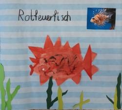 Kl. 1/2 - Lustig gemalte Fischnamen