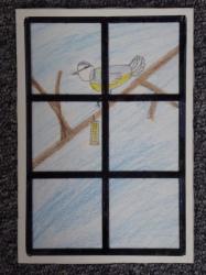 Vögel am Fenster_1
