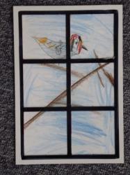 Vögel am Fenster_4
