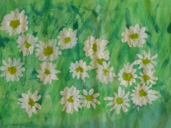 Kl. 1/2 Blumenwiese