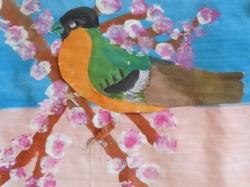 Unsere bunte Vogelwelt_2