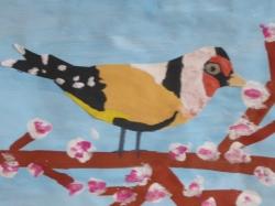 Unsere bunte Vogelwelt_3