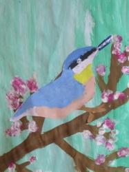 Unsere bunte Vogelwelt_6