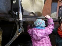 Besuch auf dem Bauernhof bei Hankens